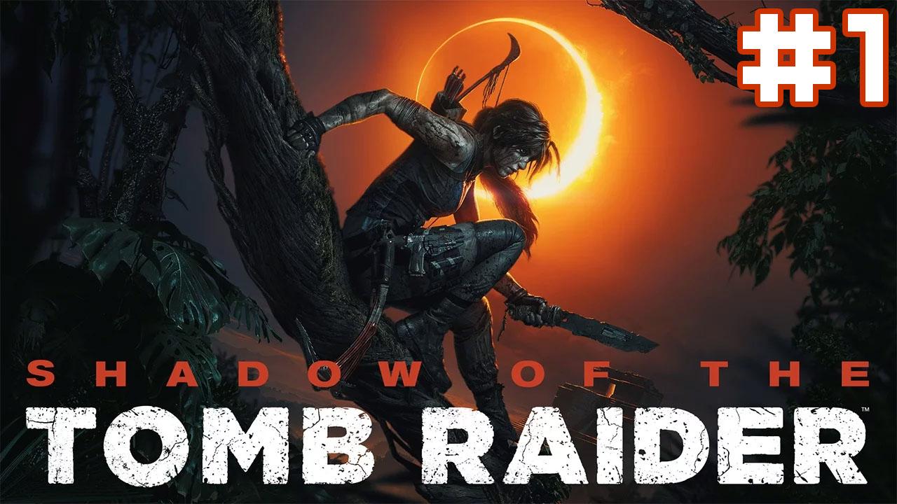 Tomb Raider Lynk Former